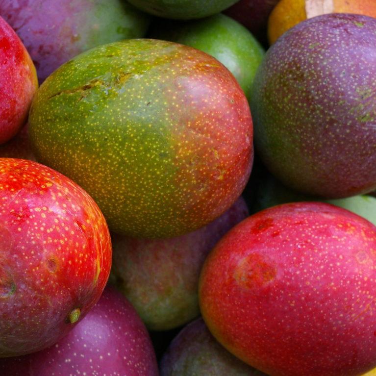 FruitPics 018